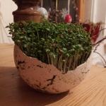 Keramik Mini Pflanzgefäß