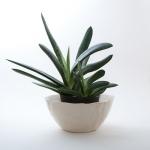 Keramik Übertopf