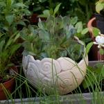 Keramik Pflanzgefäß